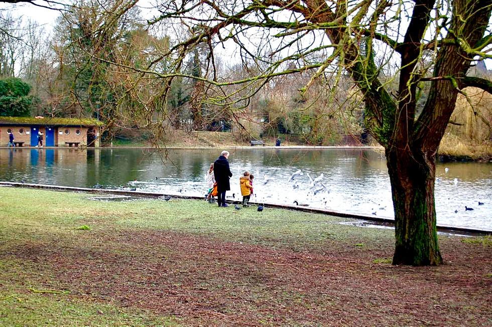 세인트 알반의 한 공원에서 (A park in St Albans)