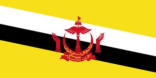 Panaga School Brunei Flag