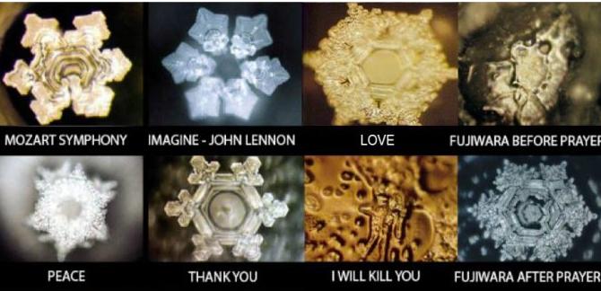 自分の体内の水の結晶