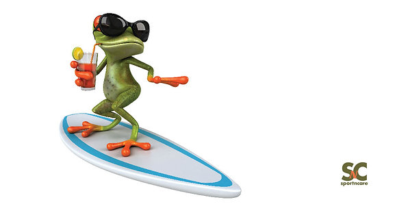 Surfer Frog - BT8075