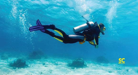 Scuba Diver - MT5122