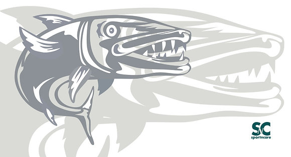 Graphic fish in gray- BT8045