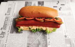 Ciccio_Kosher_Hot_Dog_Sandwich_Corner_Su