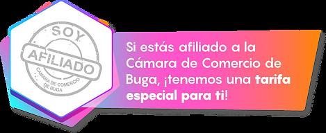 new camcom.png