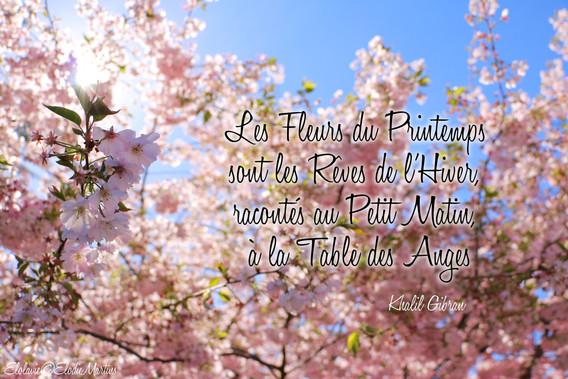 Les fleurs du printemps sont les rêves de l'hiver, racontés au petit matin à la table des anges-Elolavie
