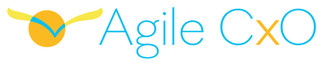 AgileCxo-final-hires.jpg