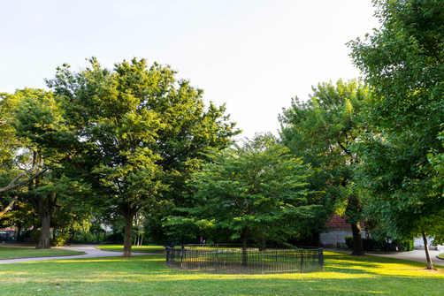 M2M_District_JerseyHeights_Park_AM_037.j