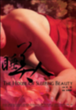 朱駿騰 Chu ChunTeng 2005 The House of Sleeping Beauty 睡美人