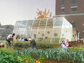 Edible Schoolyard Wins Municipal Arts Society Award