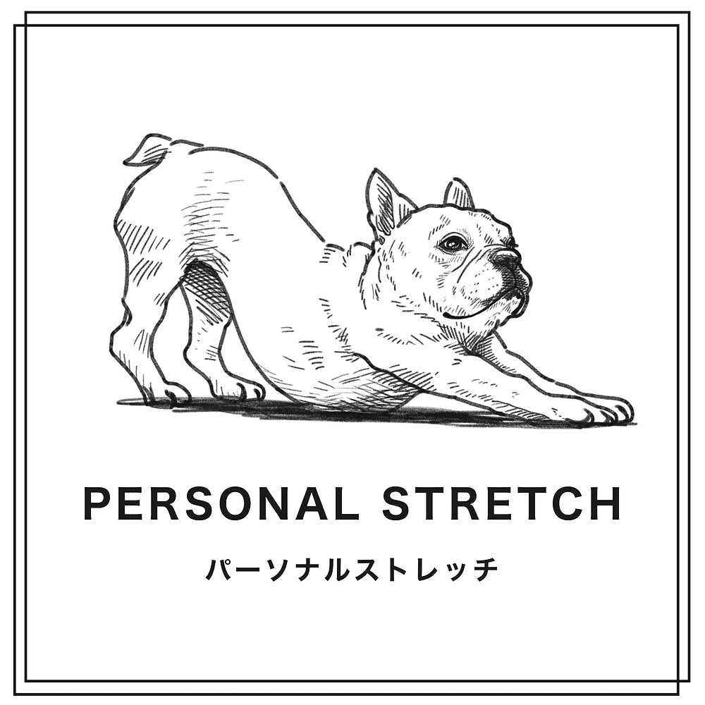 岐阜県、関市、ストレッチ、フレンチブルドッグ、ボイスケア、肩こり、腰痛、首、運動、frenchbulldog