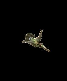 Kolibri 5.png