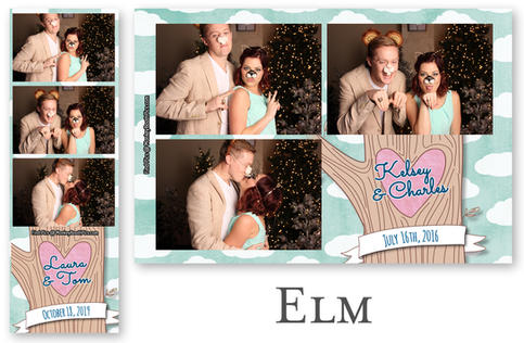 elm (1).jpg