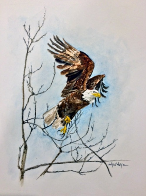Freedom (Matted)