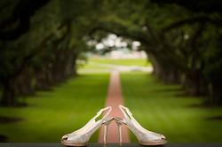 Oak Alley Plantation Wedding