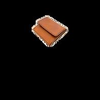 wallet_Icon_CoinCase.png