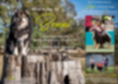 Benni + Jager Ad.jpg
