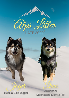 Alps Litter (1).png