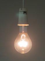 z.t. (the last incandescent light bulb)
