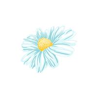 Blue Daisy Single .png