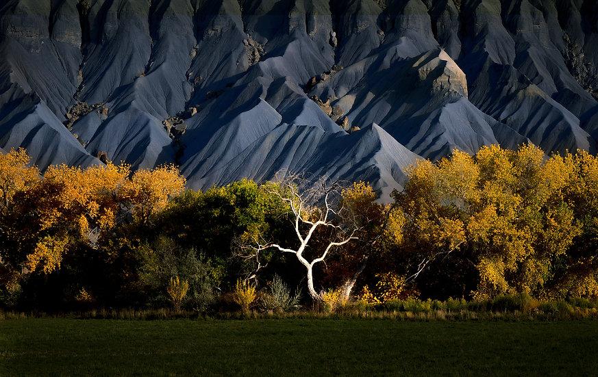 Autumn in the Utah Badlands (10/14/2021 - 10/17/2021)