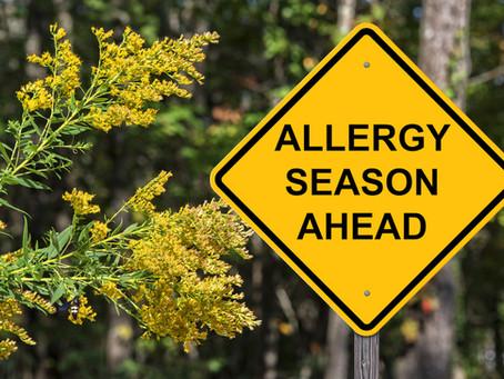 Allergy Season Is Here