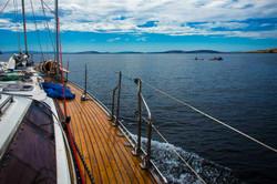 130477-Sailing,-River-Derwent,-TAS