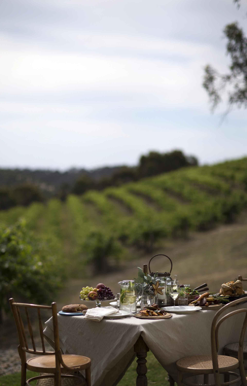 130767 Chapel Hill Winery, SA