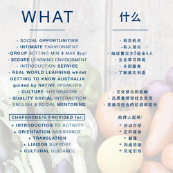 FARMERS MARKETS - WHAT 3