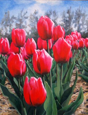 Rood tulpenveld bewerkt.jpg