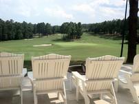 Golf Course Sage.jpg