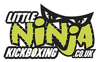 Little Ninja Kickboxing