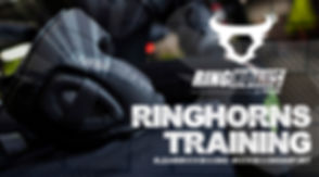 LK eShop Ringhorns Gloves 2019.jpg