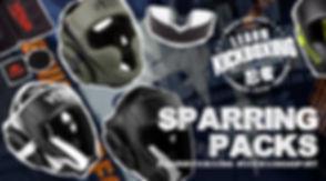 LK eShop Sparring 2019.jpg