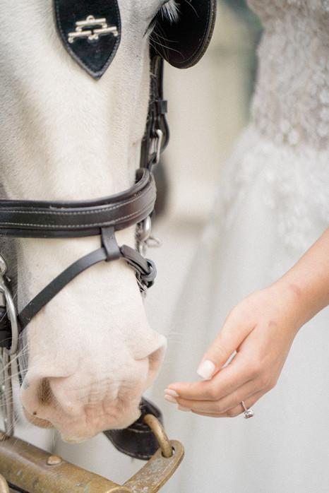 23_Regal_English_Wedding_Clearwell_Castl