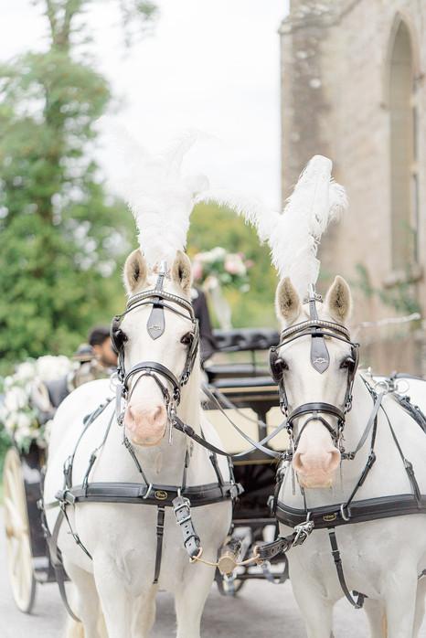 18_Regal_English_Wedding_Clearwell_Castl
