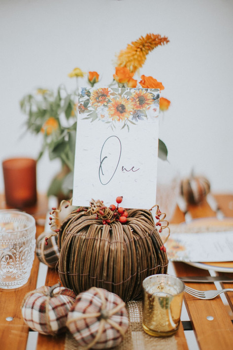 5_Cotswolds_Wedding_Country_Dining_Table