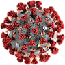 Coronavirus-illustration.png