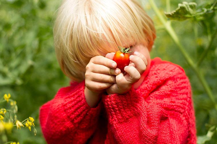 1507 Yaro & tomaat_6986 kl.jpg