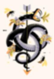 0+snake3-+web.jpg