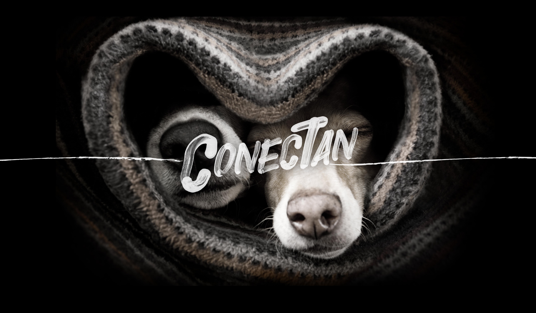 CONECTAN