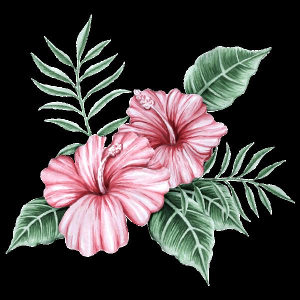 Bloemen van de waterverf