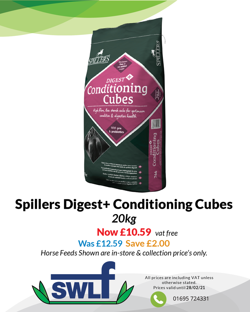 Spillers Digest+ Conditioning Cubes-01.p