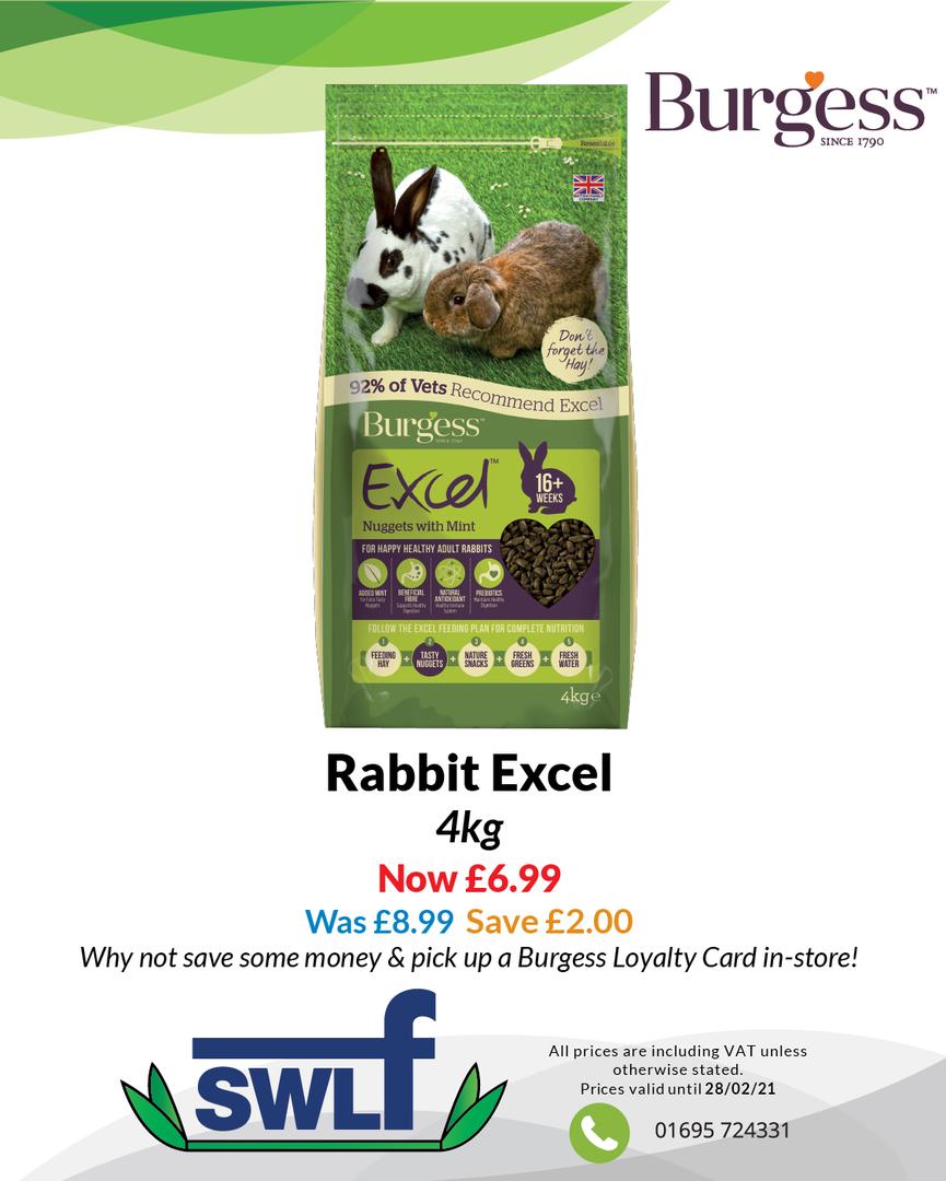 Rabbit Excel-01.png