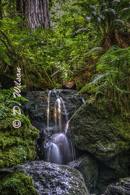Trillium Falls 1, Orick,Ca