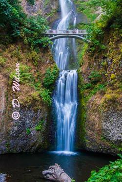 Multnomah Falls 1, Or