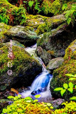 Trillium Falls 5, Orick,Ca
