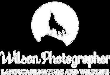 wilsonphotographer.com