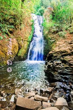 Wahkeena Falls 1, Or