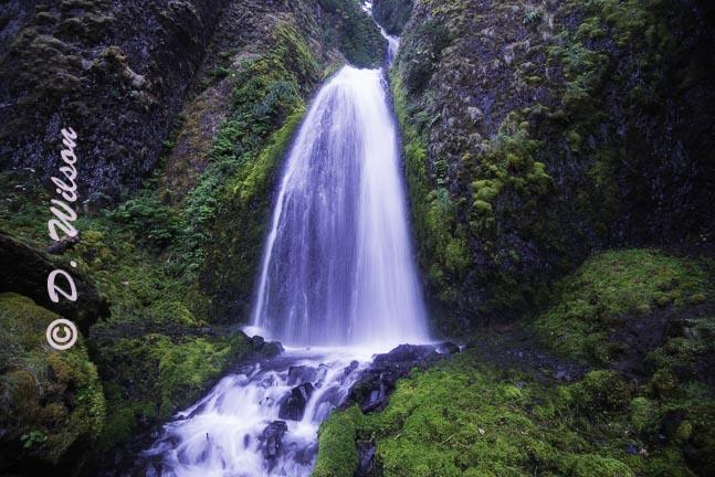 Bridal Falls 1, Or