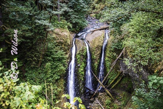 Triple Falls, Or
